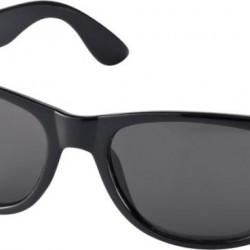 Ray solglasögon