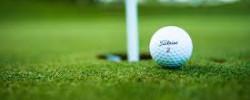 Golf (21)